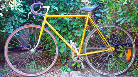 Single speed low coast d'un internaute