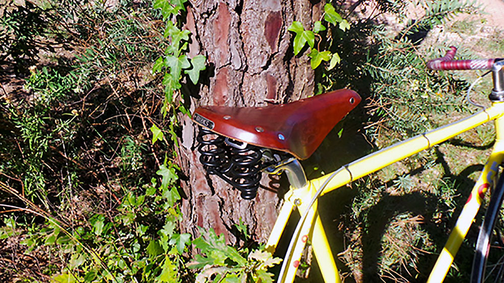 Le vélo singlespeed Véloce de Franck