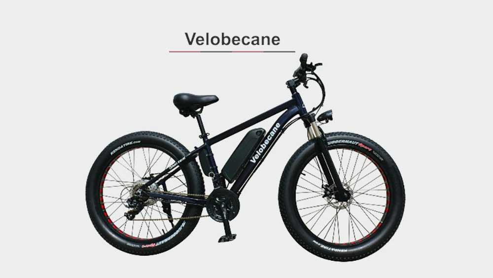 En savoir un peu plus sur la marque de vélo Velobécane
