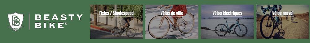 Beasty Bike