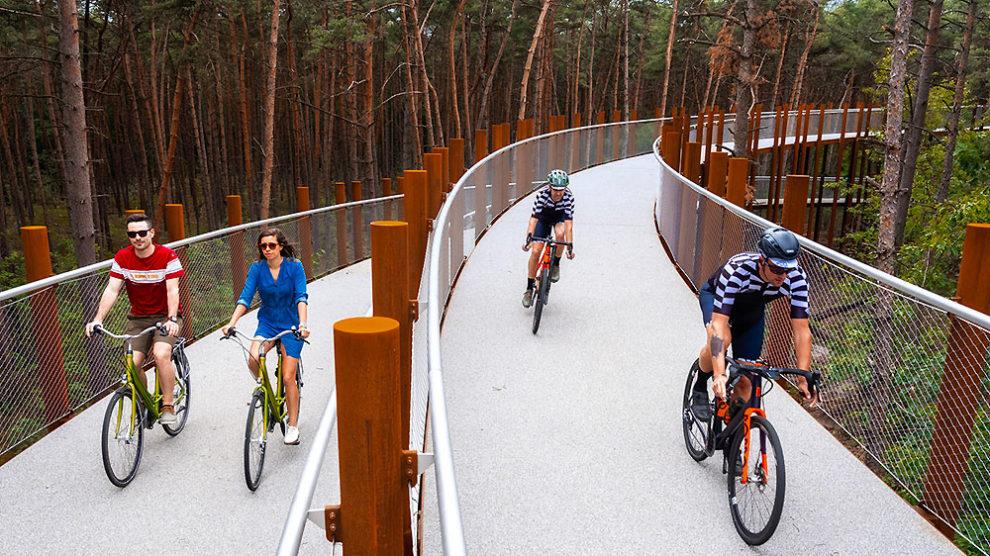 Faire un tour de vélo dans les arbres